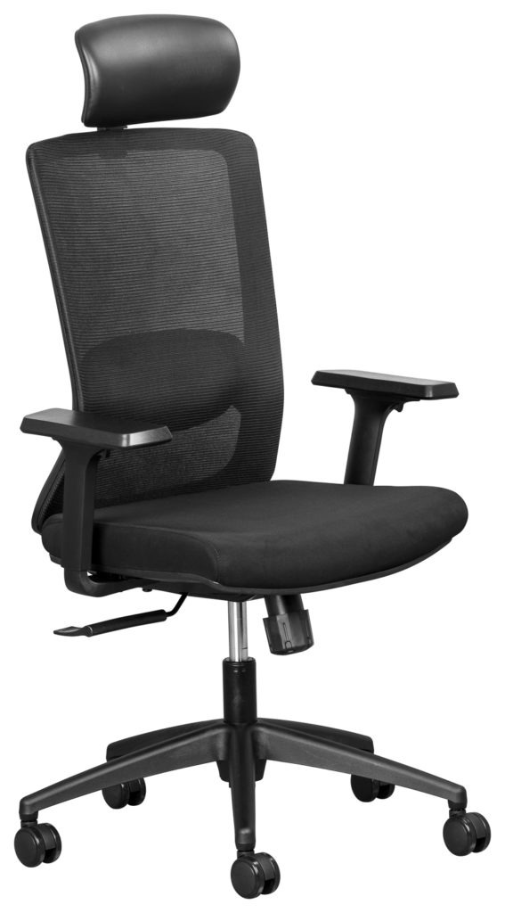 Alula Mesh Executive Chair