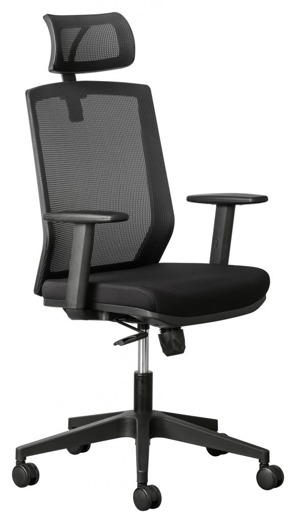 Elara Executive Office Chair