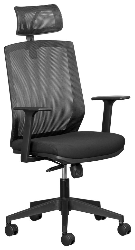 Elara Mesh Back Executive office chair