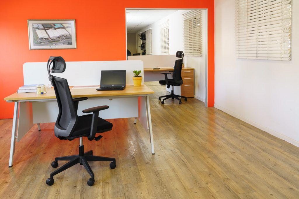 Elara Executive Office Chair