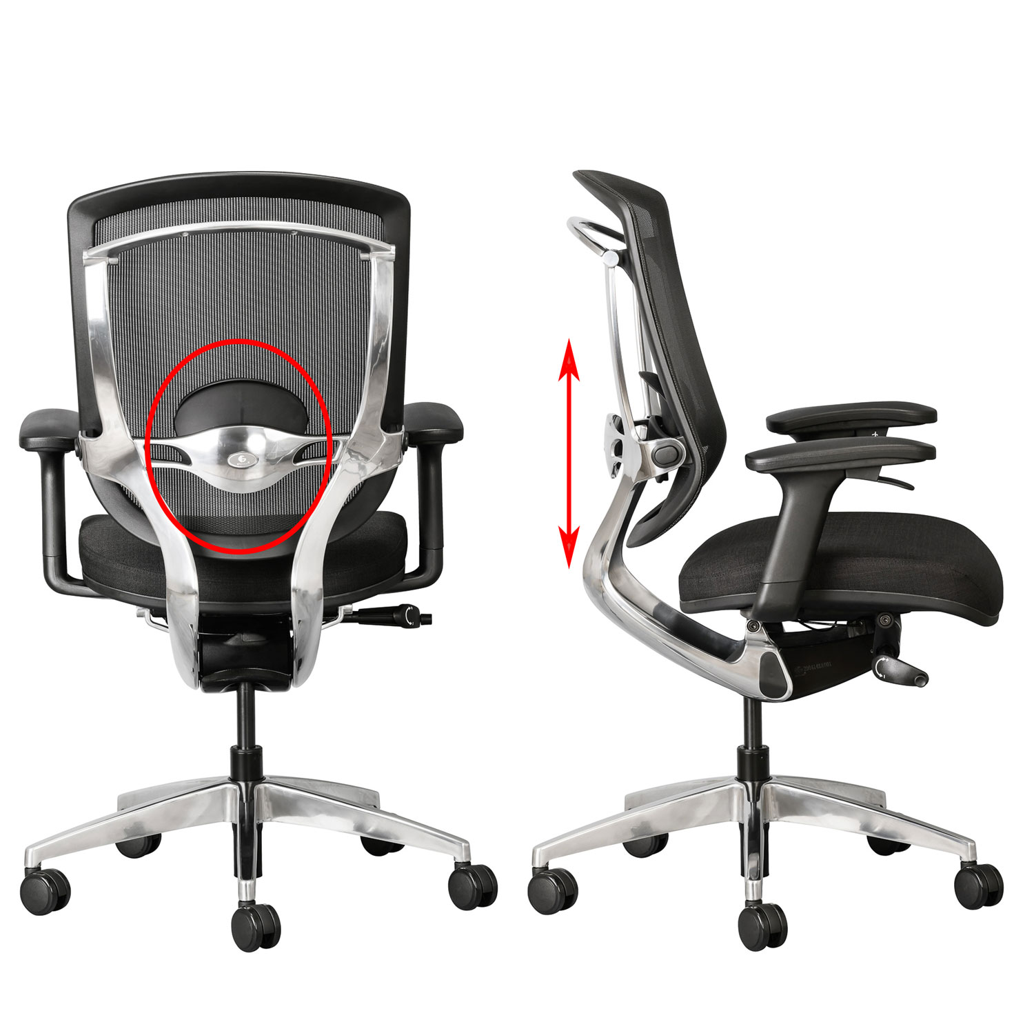 vertical lumbar support adjustment on Alya office chair